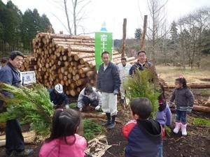 木こりツアー 植林体験