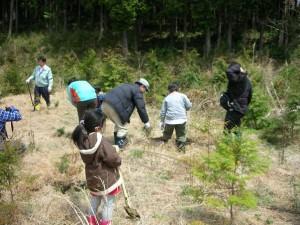 植林を通して自然を感じ、山や木に親しんだ